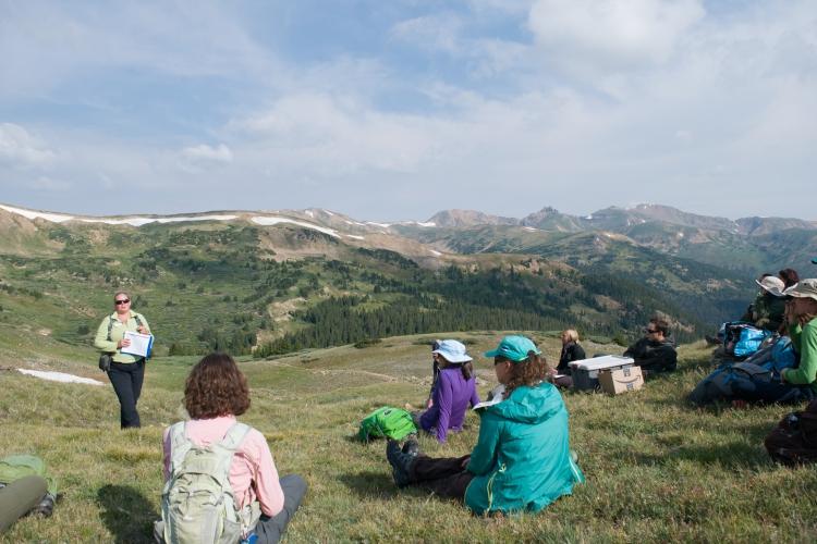 Loveland Pass Pika